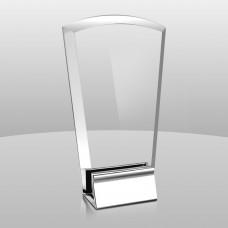 AM828  Aegis Award